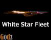 WSF Copper Star Ship