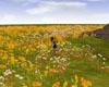 Fall Flower Field