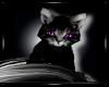 [DD]Moon The Kitten
