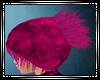 IHQ~Phinky Hair [M]