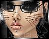 s s Neko Whiskers - Blk