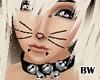 Black Cat Jingles Collar