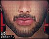 WC.Men's Groomed Beard