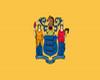 [TT] U.S New Jersey flag