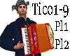 Akkordion Tico-Tico