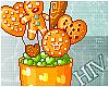 [H] Cookies