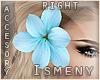 [Is] Flower Blue -R-