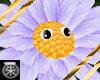 }T{Dancing Flower Violet