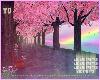 YD Park Rainbow