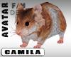 New Hamster Mini Avatar