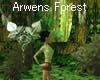 Forest of Arwen