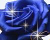 Blue rose & Heart