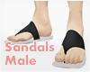 *Sandals #1 Male