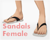 *Sandals #2 Female
