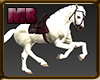 [6V2] HORSE WHITE