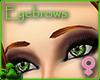 Copper Eyebrows