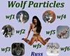 Wolf Particles