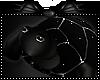 Lil black turtle