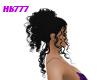 HB777 Seronity Raven
