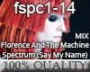 FlorenceTM - SpectrumRMX