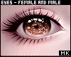 金. Big Brown Eyes