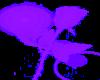 purple long stem rose