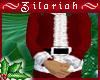 ~ZB Santa Coat