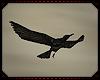 Atomic Crows
