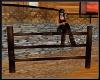 **Dark Wood Fence Posts