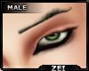 !Z! 2021 EyeBrows