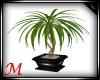 Tropic Floor Plant