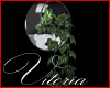 Vi *Pale Ivy Globe