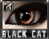 *.:.* BlackCat's Boutique UPDATED New Innocent Skin Set!! (3/18/10) *.:.* - Page 3 Images_94872d3f552b33722903b4915b33dc8b