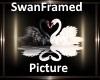 [BD]SwanFramedSign