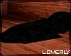 [LO] Derv Cozy Blanket