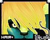 [C] Starbeez bangs