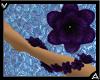 VA Purple Arm Flowers