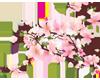 Cherry Blossom L