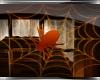 J* Spider Web