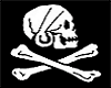 famous pirate flags ~LC