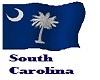The South Carolina Flag