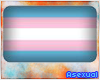 A| Transgender Flag