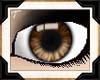 [T] Coffee Eyes