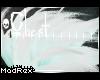 [x] Liar Chest