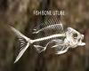 fish bone utube radio