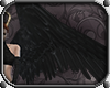 Valkyrie Wings *Black*
