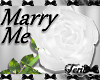 "White ""Marry Me"" Rose"