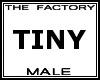 TF Tiny Male Avatar