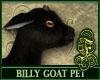 Billy Goat Black