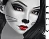 ! L! Kitty Skin II . MMR